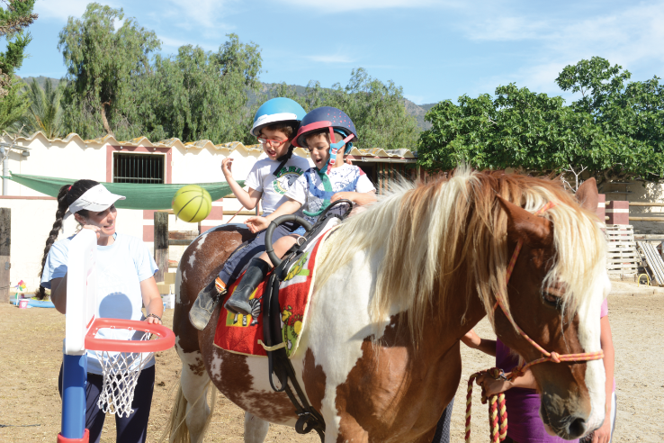Horse Assisted Therapy WorkingCommunication And Expressing Emotions