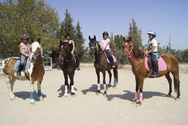 Riding Lesson for Pony Club Kids