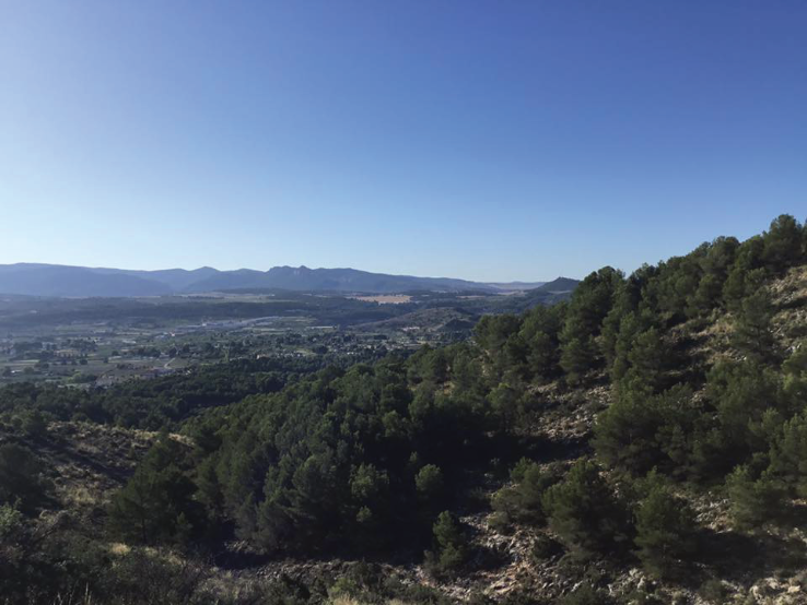NW Murcia from above Caravaca
