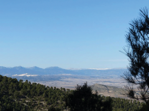 Ricote four hills