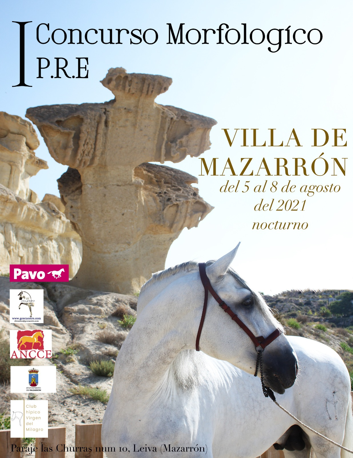 First Spanish Purebred Morphological Contest 'Villa de Mazarrón'