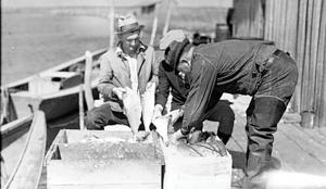 Fish ice box, c.1935  (c) Farrell Photo Collection