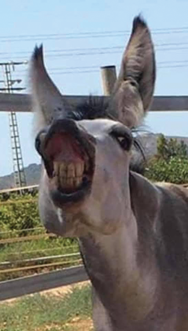 Alturo showing off his new dental work